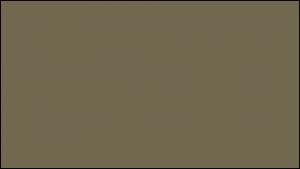 Gutter Color Options 13