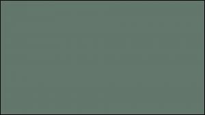 Gutter Color Options 31