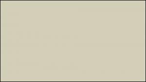 Gutter Color Options 17