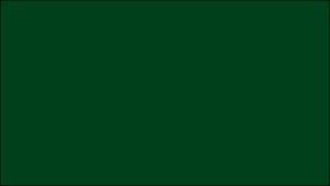 Gutter Color Options 19