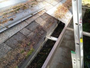 gutter leaf protection