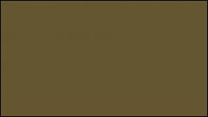 Gutter Color Options 28