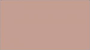 Gutter Color Options 25