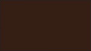 Gutter Color Options 7