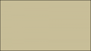 Gutter Color Options 24