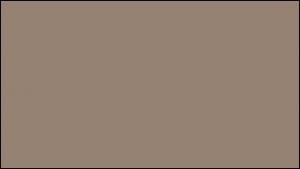 Gutter Color Options 15